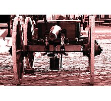 Resting Cannon Photographic Print