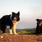 Indy and Shela. by Michael Haslam
