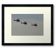 Choppers Framed Print