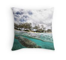 Catching a breath Throw Pillow