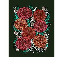 Chrysanthemums - Floral, Flower, Vintage, Design, Illustration by Andrea Lauren Photographic Print
