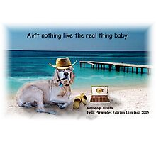 Ain't Nothing Like the Real Thing Baby! Photographic Print
