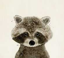 little raccoon by bri-b
