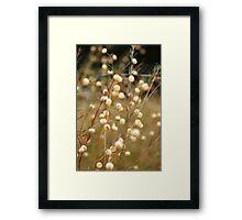 Marshmallow Stems Framed Print