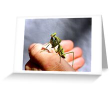 The hitchhiker  Greeting Card