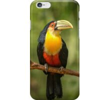 Toucan in Tree, Iguazu Falls, Brazil iPhone Case/Skin