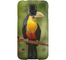 Toucan in Tree, Iguazu Falls, Brazil Samsung Galaxy Case/Skin