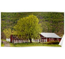 Tree and Barn near Mt Shasta, California (faux painting) Poster