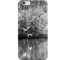 Two White Herons in Flight iPhone Case/Skin