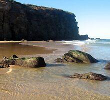 Redhead Beach by Cheryl Parkes