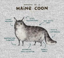 Anatomy of a Maine Coon Kids Tee