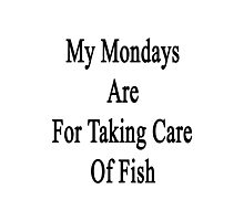My Mondays Are For Taking Care Of Fish  Photographic Print