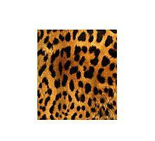 LeopardInside Photographic Print