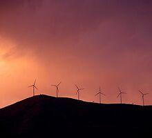 Feel The Wind by Kerstin  Inga