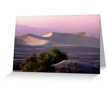 Sunset Dune Greeting Card