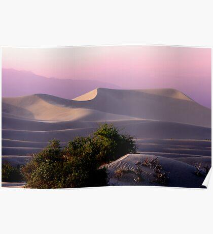 Sunset Dune Poster
