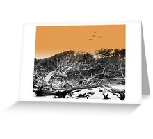 Among The Driftwood Greeting Card