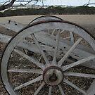 Cart Wheel by saharabelle