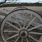Cart Wheel by saharabelle