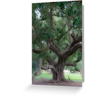 Lovely Oak Greeting Card