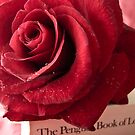 My Love Is like a Red Red Rose by George Swann
