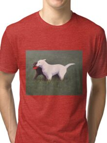 labrador retrievers with red frisbee Tri-blend T-Shirt