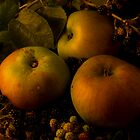 Bramleys and Blackberries by Gazart
