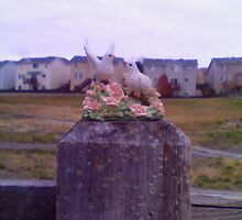 Gods doves by C:unknown O:unknown