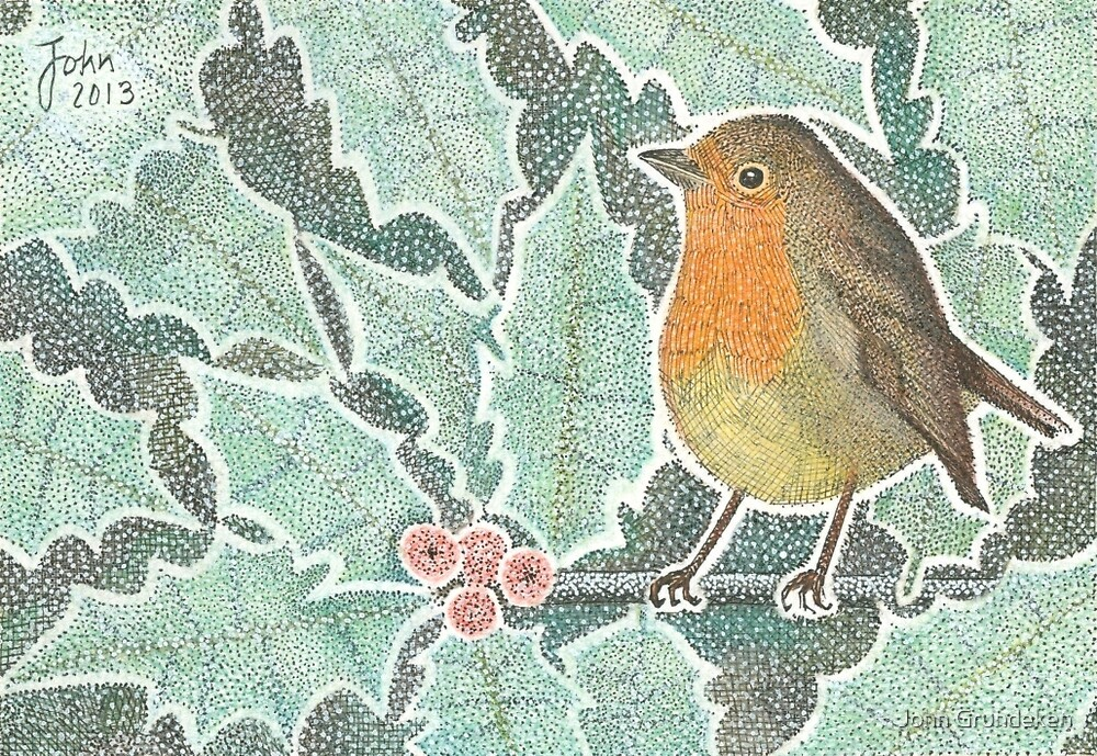 Robin and frosted holly in winter by John Grundeken