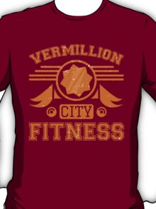 Vermillion City Fitness T-Shirt