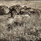 Rock Formation near Sears-Kay Ruins by Roger Passman