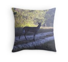 Should I Go - Or Should I Stay - I Throw Pillow
