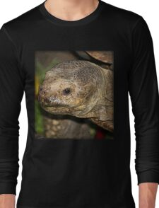 Old Tortise Long Sleeve T-Shirt