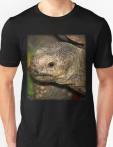 Old Tortise T-Shirt