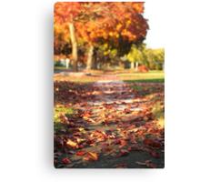 Autumn Path in Orange Canvas Print