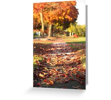 Autumn Path in Orange Greeting Card