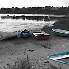 Oyster Pond by J. Sprink