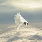 Free Falling Dream by Richard Davis