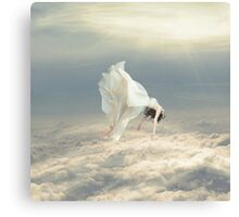 Free Falling Dream Canvas Print