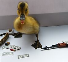 ducks at war over bread prices by darren  shaw