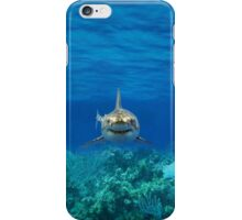 SHARK IPHONE CASE 1 iPhone Case/Skin