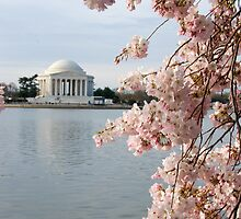 Jefferson in Bloom by Jim  Walline