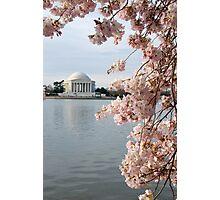 Jefferson in Bloom Photographic Print