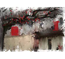 Red Door  Photographic Print