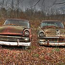 Ford (Found On Road Dead) by BigD