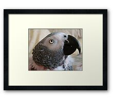 WHAT IS SHE THINKING? Framed Print