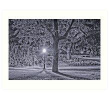 Winter in Central Park Art Print