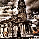 Auckland Town hall by Ant Vaughan