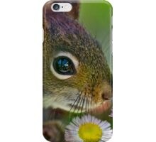 Flowers and Squirrel iPhone Case/Skin