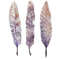 Watercolour Feathers by ohdeer